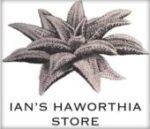 Official UK Distributor of George Theodoris Artisan Plants & SP Plants